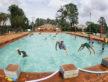Centro de Convivência da Família realiza atividades direcionadas a semana da criança. Na quinta e sexta-feira o centro recebeu cerca de 190 crianças do Ceia  - Chico Leite