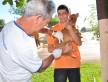 A campanha de vacinação antirrábica vai continuar  nesta semana na região do Grande Água Boa, na Vila Adelina I e II e na Aldeia Jaguapiru. Assecom/arquivo