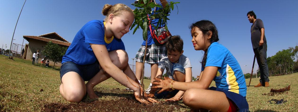 No dia da árvore, Parque Rego D'Água recebe plantio de mudas