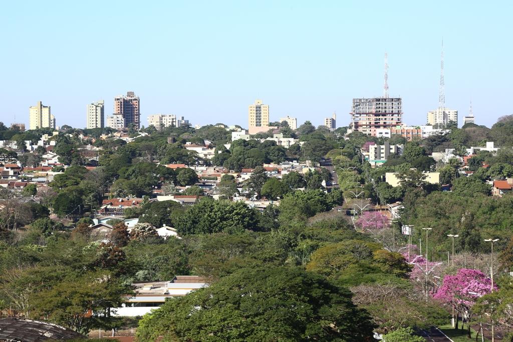 Plano de Arborização Urbana de Dourados será apresentado hoje