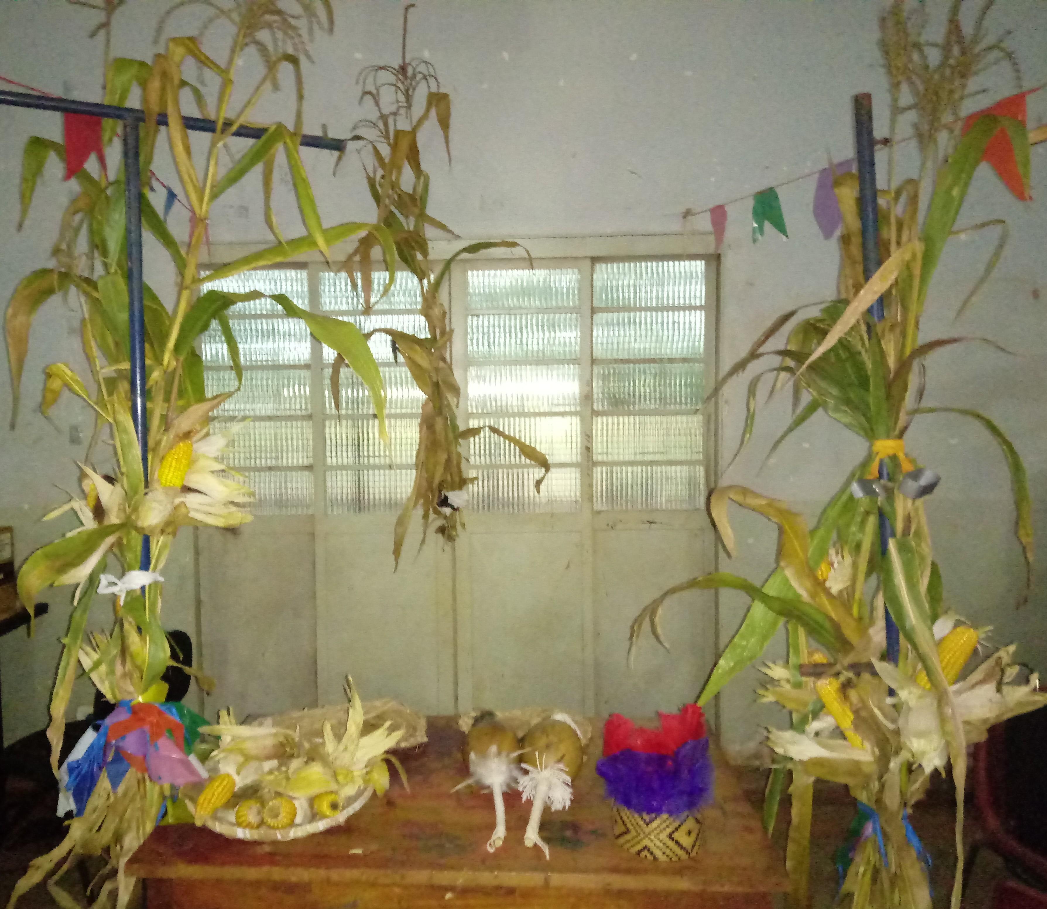 1ª Festa do Avati é realizada pela Prefeitura na Reserva Indígena
