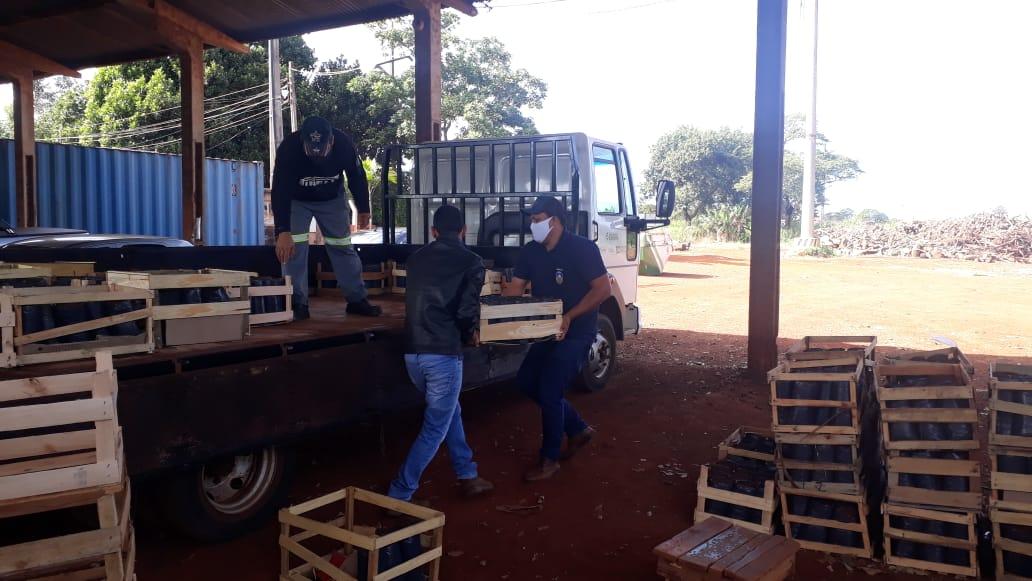 Secretaria de Agricultura entrega 1,5 mil mudas de maracujazeiro-azedo para plantio
